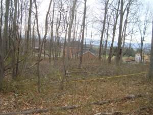 Crossroads Farm Site