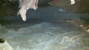 vented crawl space