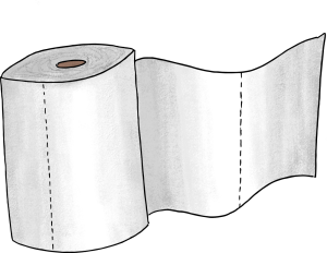 The toilet paper game