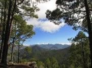 hiking Gran Canaria Tamadaba