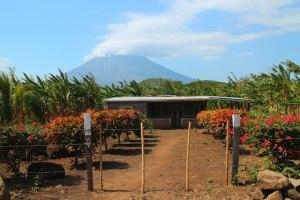 visit volcanoes in Nicaragua - Volcan Concepcion