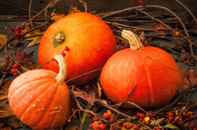 Fall and Winter Cooking Classes