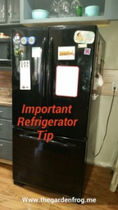 Kitchen tip- refrigerator maintenance and cleaning