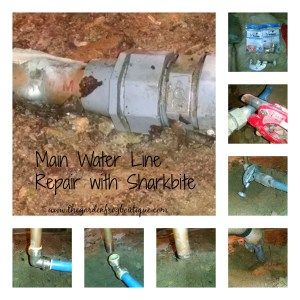 Main water line repair with Sharkbite
