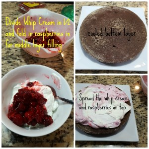 Almost Homemade Chocolate Cake with Real Whip Cream and Raspberries