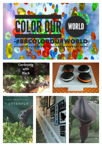 #BB Color our World Black in gardening, home, and recipe