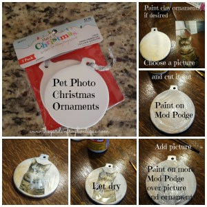 Pet Photo Christmas Ornament