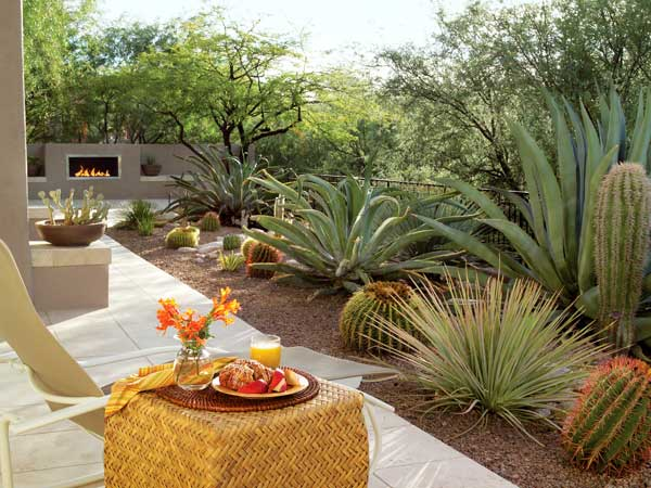 How to Give Your Desert Backyard Southwestern Flair | The ... on Desert Landscape Ideas For Backyards id=38083