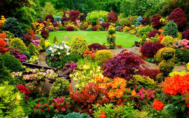 Beautiful Backyards: Inspiration for Garden Lovers! • The ... on Stunning Backyards  id=32841