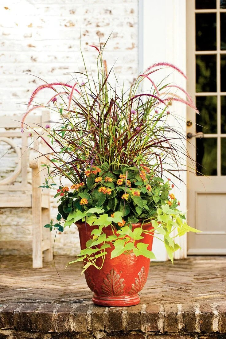 Fall Planter Ideas - Wow 'Em in 3 Easy Steps • The Garden ... on Tree Planting Ideas For Backyard id=95988