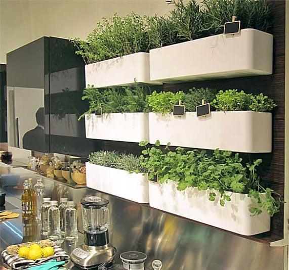 indoor herb garden 14 Brilliant DIY Indoor Herb Garden Ideas   The Garden Glove