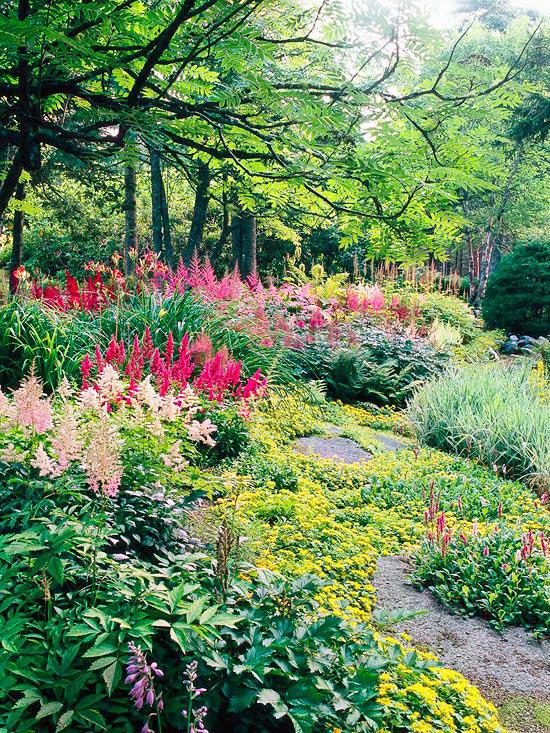 Showy Shade Garden Ideas • The Garden Glove on Shady Yard Ideas  id=53123