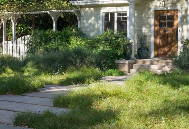 Alternatives to Grass : Front Yard Landscaping Ideas • The ... on No Mow Backyard Ideas id=93524