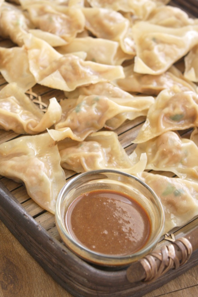 Pan Fried Dumplings with Soy Chili Peanut Sauce -- TheGarlicDiaries.com