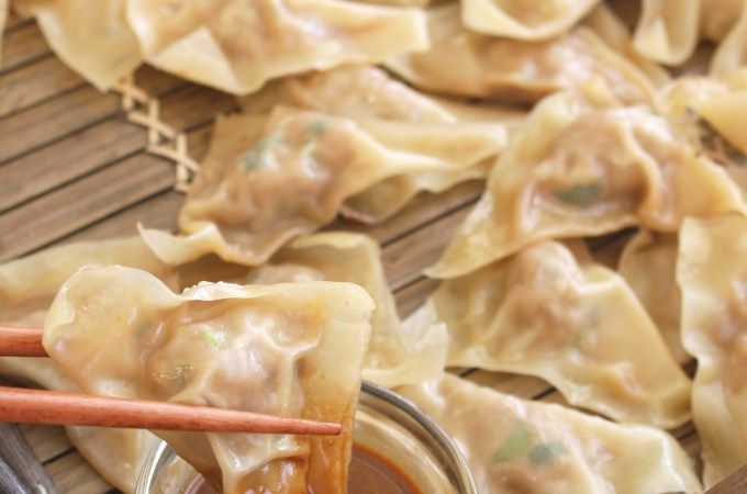 Pan Fried Dumplings with Soy Chili Peanut Sauce