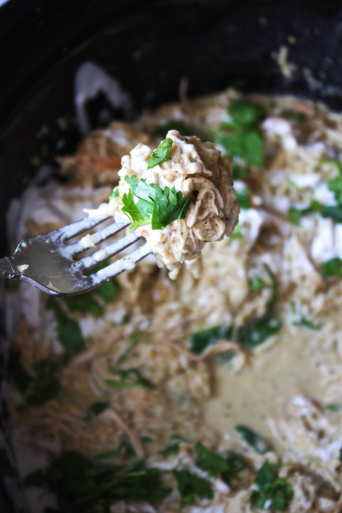 Creamy Crock-Pot Salsa Verde Chicken - This is SUCH an easy recipe that leads to the most flavorful, tender pot of shredded chicken ever! #glutenfree -- TheGarlicDiaries.com