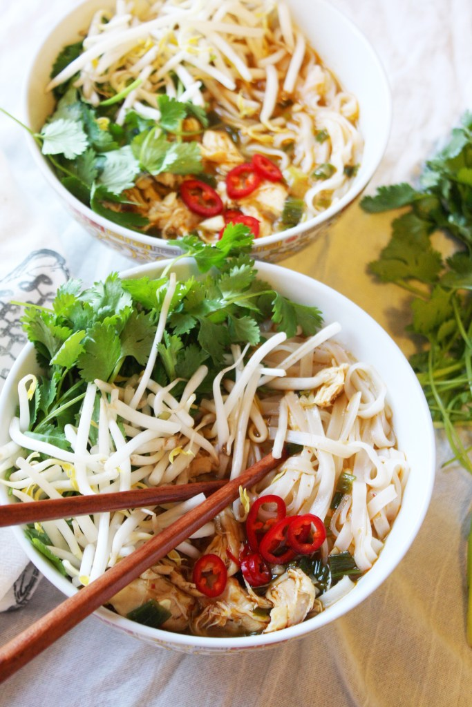 Spicy Thai Noodle Bowls - Such an easy and yummy dish! The perfect combination of soft rice noodles and flavor packed broth. #GlutenFree -- TheGarlicDiaries.com