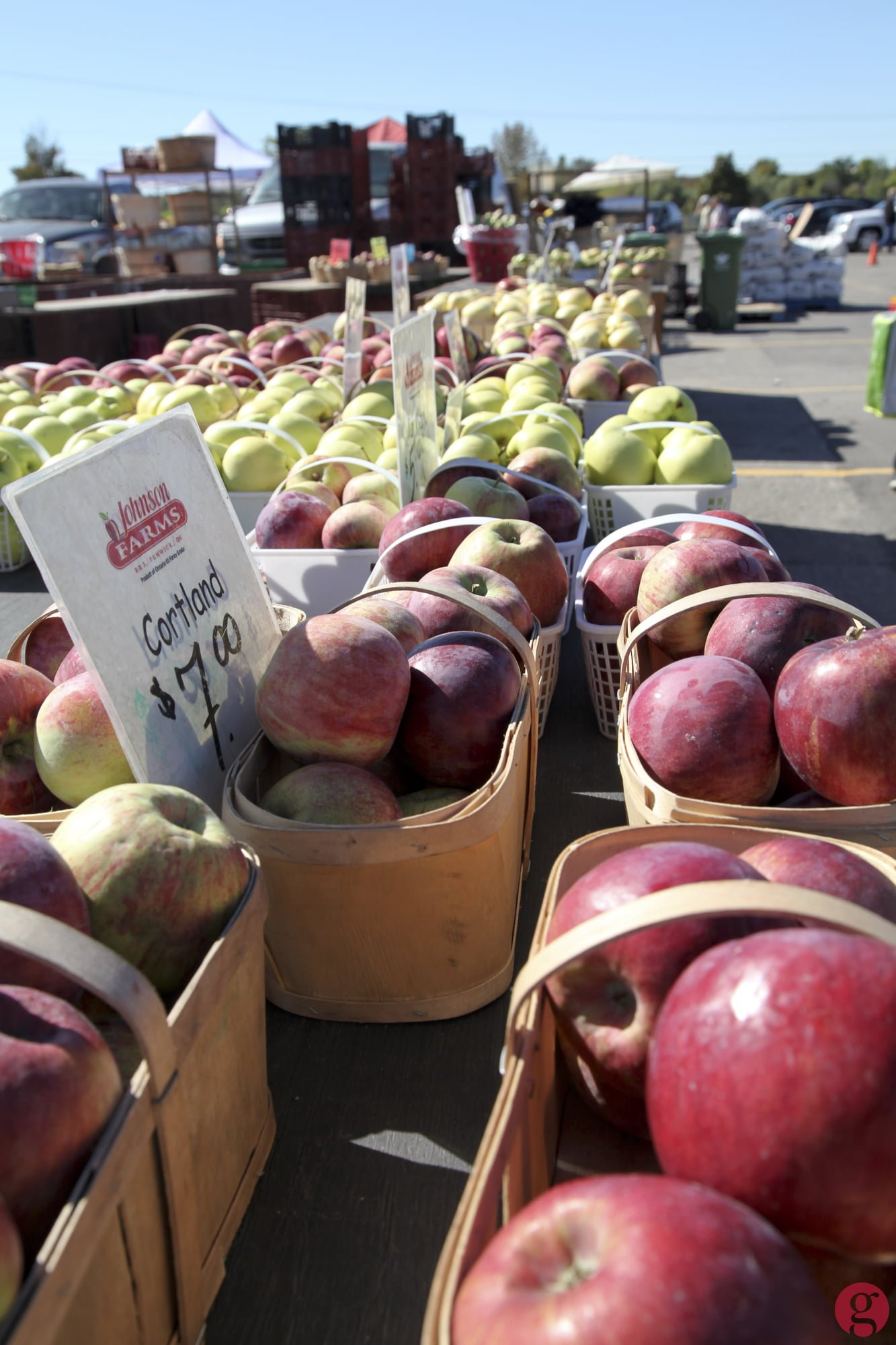 Apples for sale