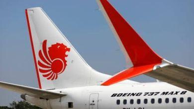 Photo of Boeing 737 Crashes, 60 Passengers Perish