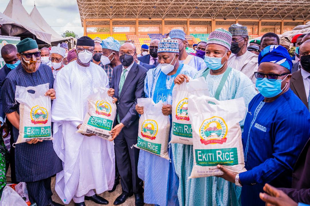 Ekiti To Create 12,000 To 50,000 Jobs Through CBN-ABP Rice Farming - Fayemi