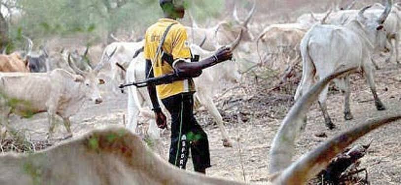 How Fulani Herdsmen Killed My Workers, Wrecked Havoc On My Farm But Police Did Nothing - Businessman
