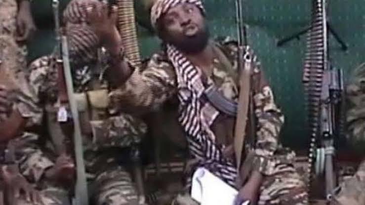ISWAP Fighters Arrest Shekau's Commanders, Meet With Surrendered Top Boko Haram Members