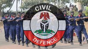 Military, Paramilitary Agencies Need Strategic Collaboration To Tackle Nation's Insecurity- Audi