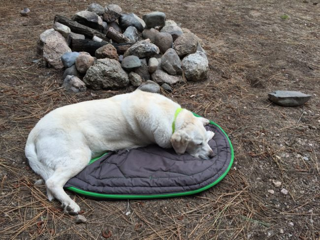 Ruffwear sleeping bag