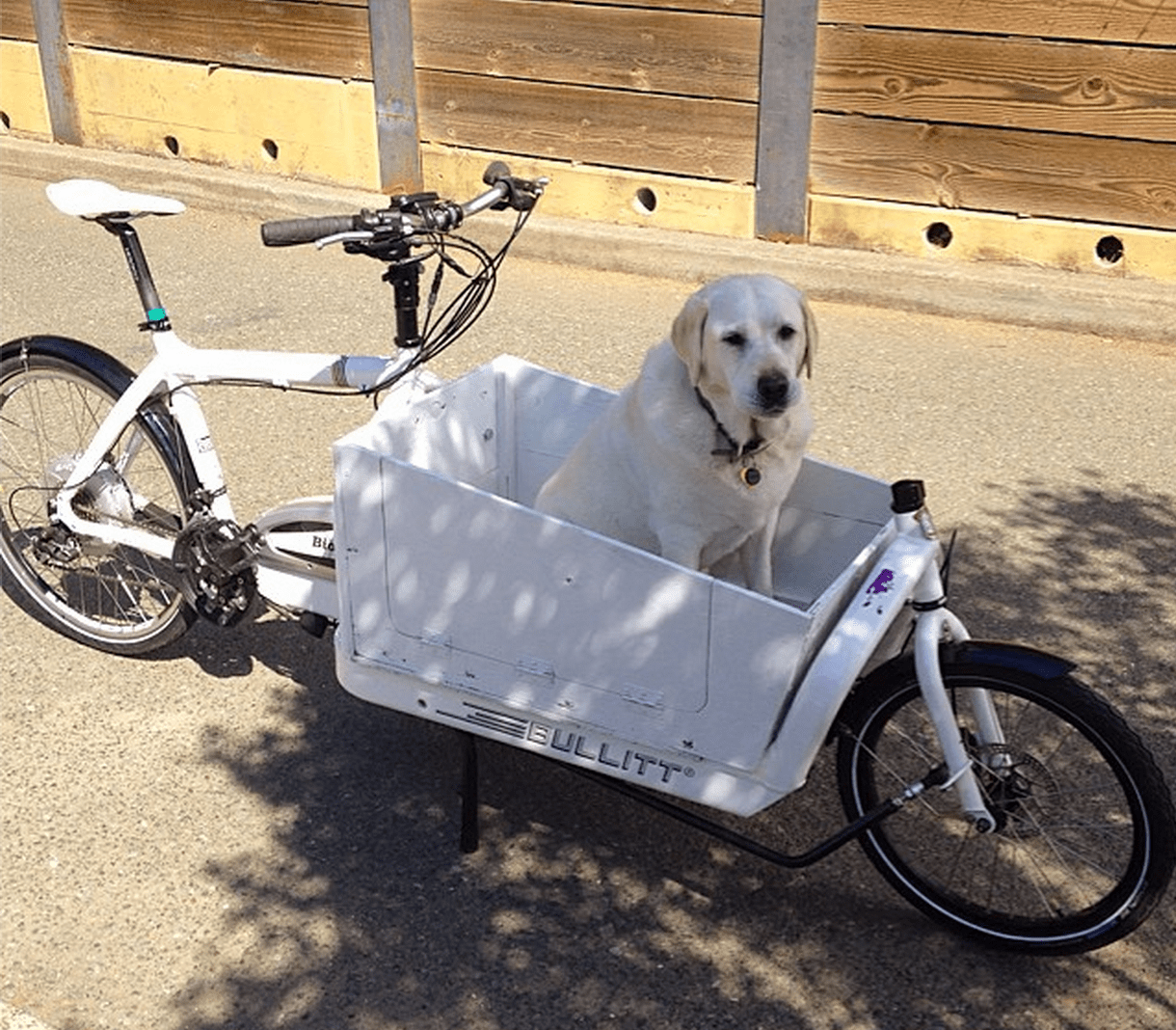 Bullitt electric assist cargo bike review