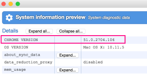 The Chrome system information window shows the current Chrome version number