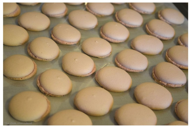 lopsided feet lavender macarons
