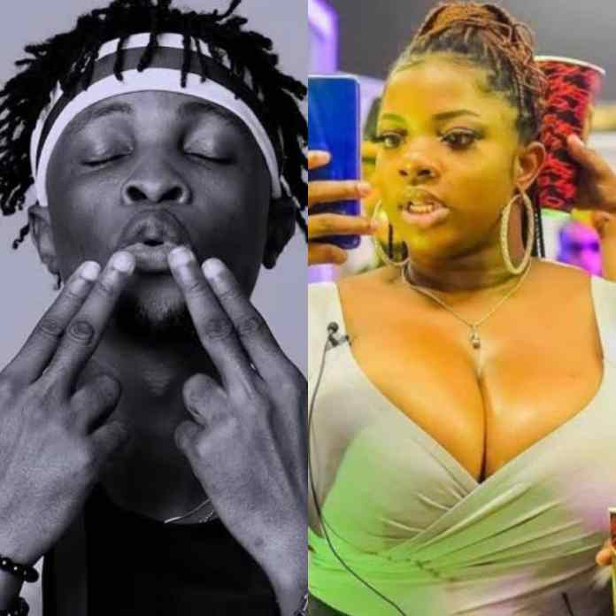 #BBNaijialockdown2020: Watch Video Of Laycon And Dorathy In Same Bed That Got People Talking