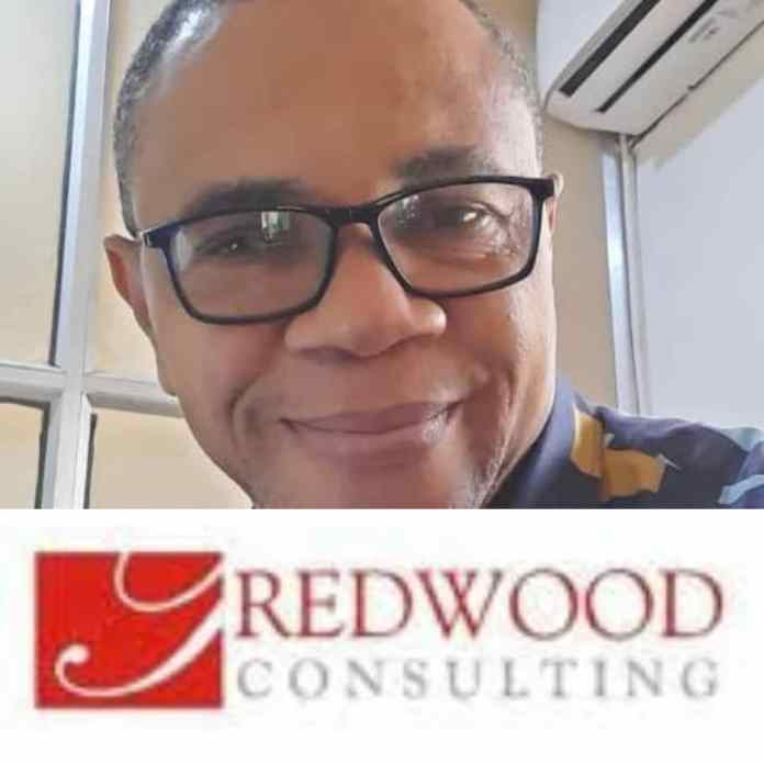 Redwood Consulting Appoints Jerry Sawyerr As General Manager