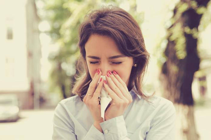 Four ways to fight spring allergies