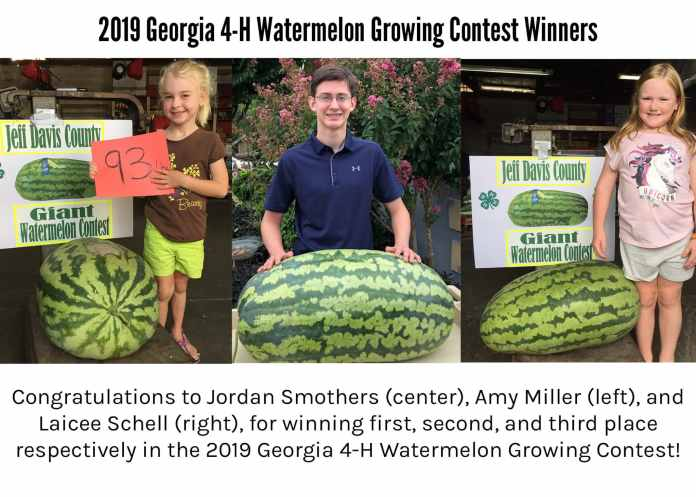 Walton boy grows 135 pound watermelon