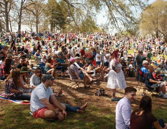 Brookhaven Cherry Blossom Festival canceled