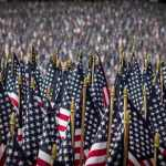 american flags, memorial day, memorial