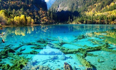 Crystalline-Turquoise-Lake-Jiuzhaigou-National-Park-China