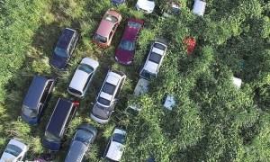 araçlar bitki kaplamış