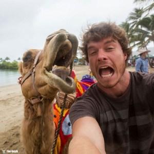 hayvanlarla selfie