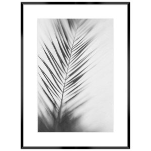 Coastal Palm Leaf Framed Wall Print