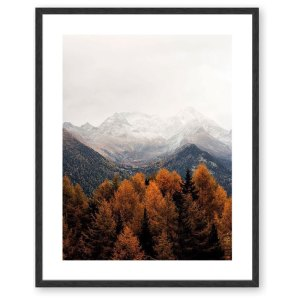 Scandinavian Misty Autumn Forest Framed Print