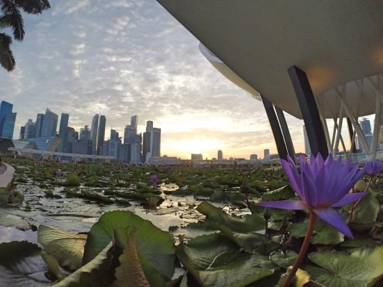 Foto grandangolare GoPro