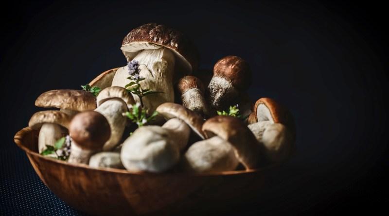 Ricette a base di funghi - TheGiornale