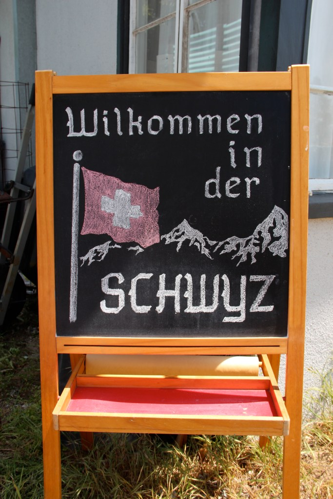 Kid's Book Club: The Overall Boys in Switzerland