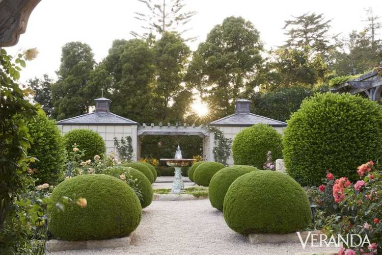 Oprah Winfrey's Rose Garden
