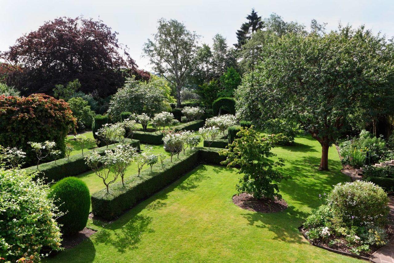 Clipped Box Boxwood Flowering Trees Shrubs English Garden The