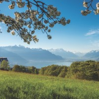 The Du Parc enjoys magnificent views to Lake Geneva