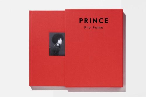 Prince Pre-Fame