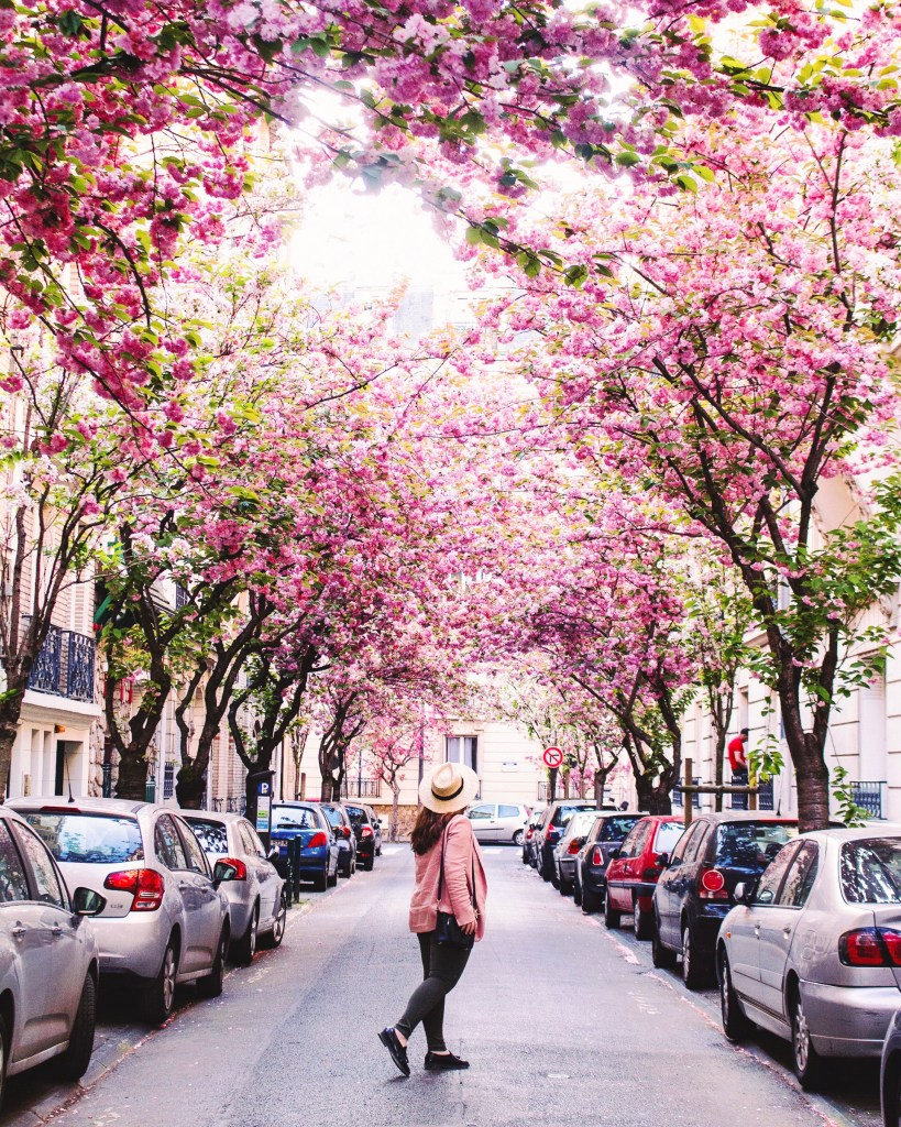Street in Vincennes- cherry blossom Paris- THE GLITTERING UNKNOWN